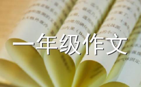 【精华】我爱我家作文汇编5篇