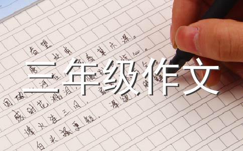 【荐】背影作文汇编9篇