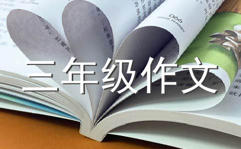 【实用】小制作作文集锦5篇