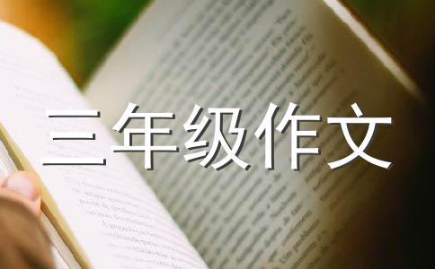 【精选】随笔200字作文