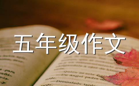 【热门】我的未来不是梦作文(通用5篇)