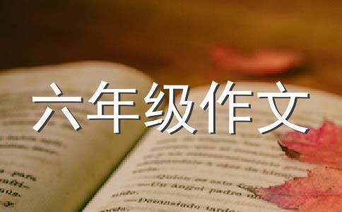 【精华】成长500字作文合集七篇