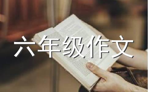 【精华】中国梦我的梦800字作文(精选10篇)