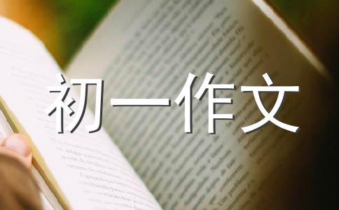 【推荐】包粽子作文