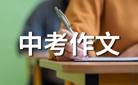 2009中考英语话题预测36语言学习