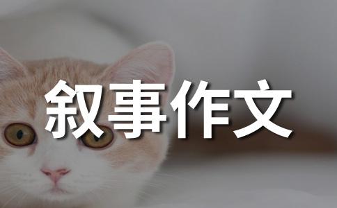 【必备】我的故事400字作文集锦5篇