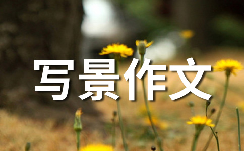 【实用】初冬500字作文6篇