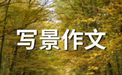【荐】秋的作文(精选十篇)