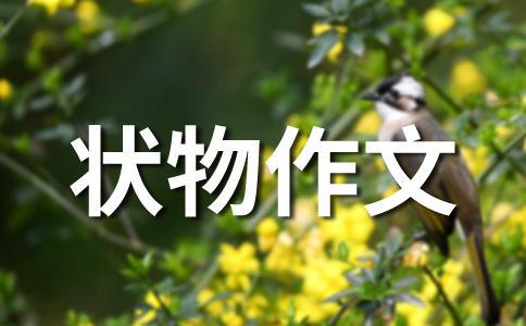 【必备】朋友400字作文(通用14篇)