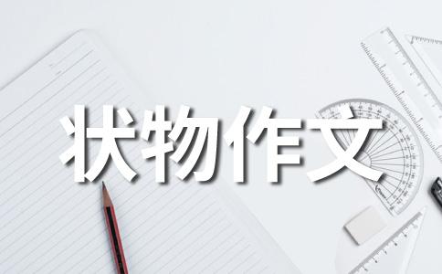 【推荐】小动物作文7篇