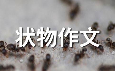 【荐】母亲500字作文集锦5篇