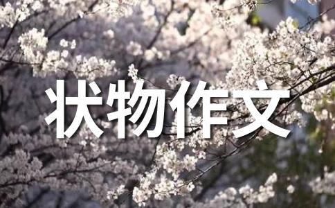 【必备】中秋400字作文