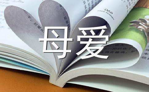【必备】母爱400字作文集锦12篇
