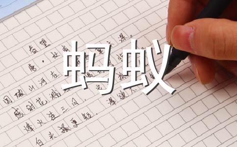 【热门】观察蚂蚁作文(精选十一篇)