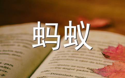 ★观察500字作文(通用5篇)