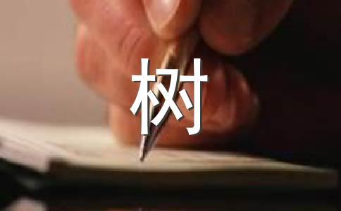 【必备】松树的作文