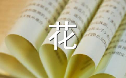 【精华】菊花的400字作文8篇