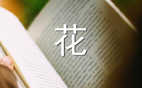 ★菊花200字作文(通用10篇)