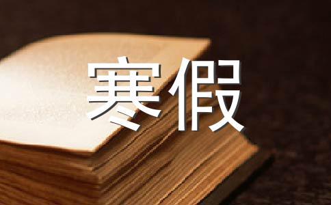 【热门】快乐的寒假作文集锦六篇