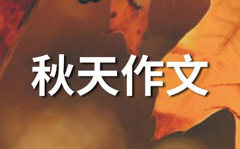 秋天的田野400字作文