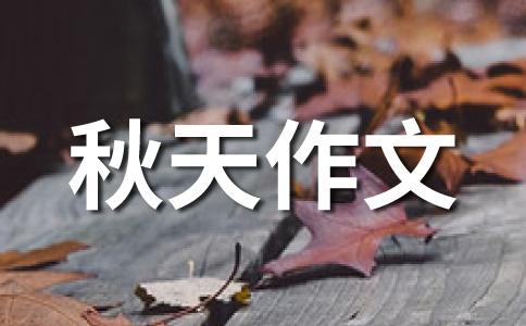 【精品】秋天的落叶作文
