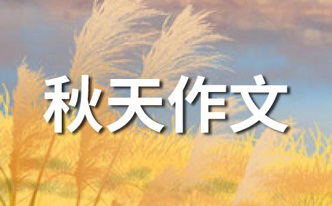 【荐】秋天的200字作文汇编9篇