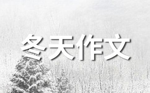 ★冬天的雪800字作文集锦五篇