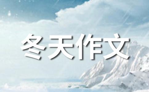 【热】冬天的雪作文(通用12篇)