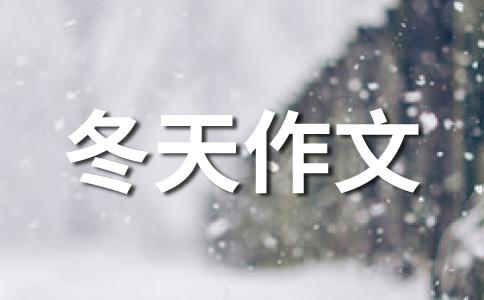 【精选】冬天的雪作文(精选15篇)