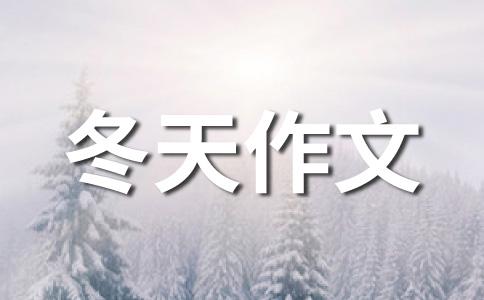 【精】冬天的雪作文(通用七篇)