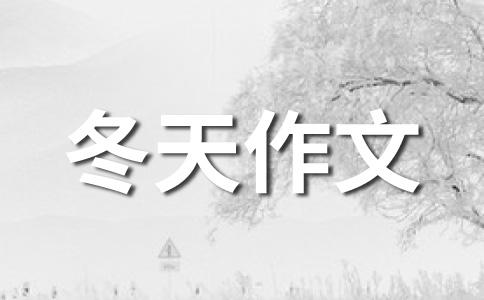 ★冬天的雪作文合集6篇