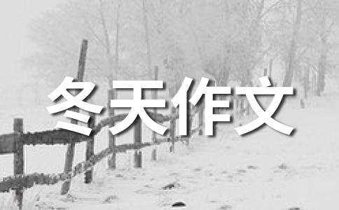 【精华】冬天的雪作文汇总10篇