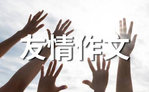 【热】友情500字作文集锦9篇