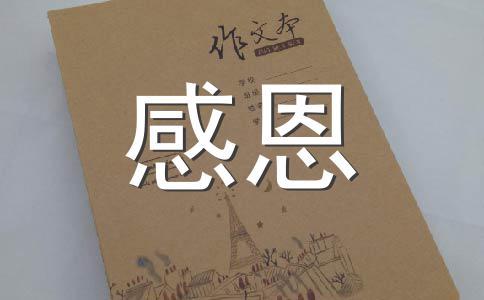 【必备】感恩作文(精选14篇)