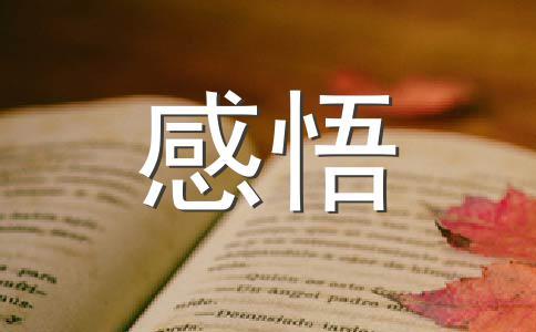 【热门】感悟青春500字作文集锦七篇