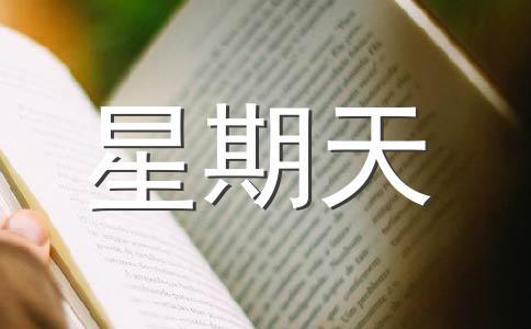 【热门】星期天500字作文(通用六篇)