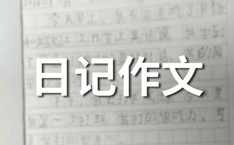 【热门】数学日记500字作文合集5篇