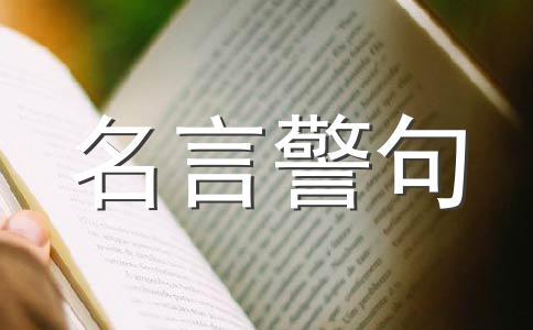【精品】读书作文合集12篇