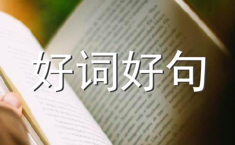 【必备】端午节祝福语作文(精选11篇)