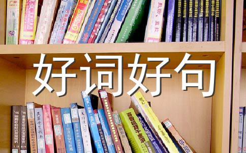 【推荐】母亲500字作文汇编6篇