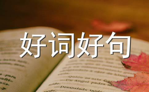【必备】毕业作文5篇