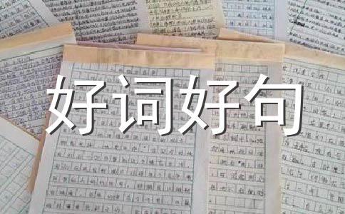 【热】老师的作文