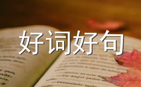 【热】重阳节作文(精选八篇)