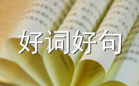 【精】中秋500字作文汇编5篇