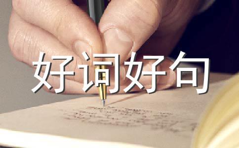 【精选】秋天的500字作文集锦八篇