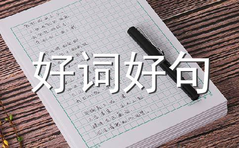 【精品】端午节祝福作文(精选15篇)